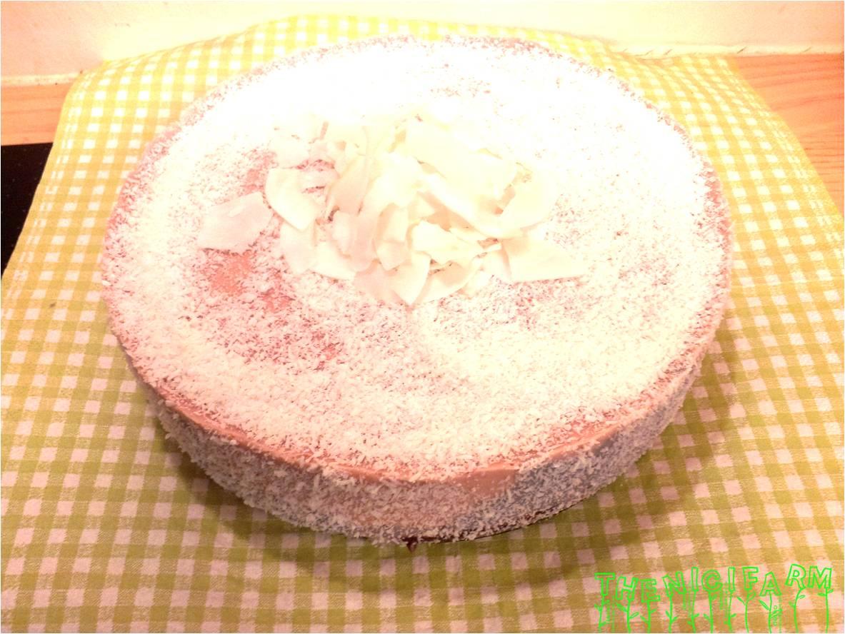 coconut raspberry cake vegetarische kokos himbeer torte