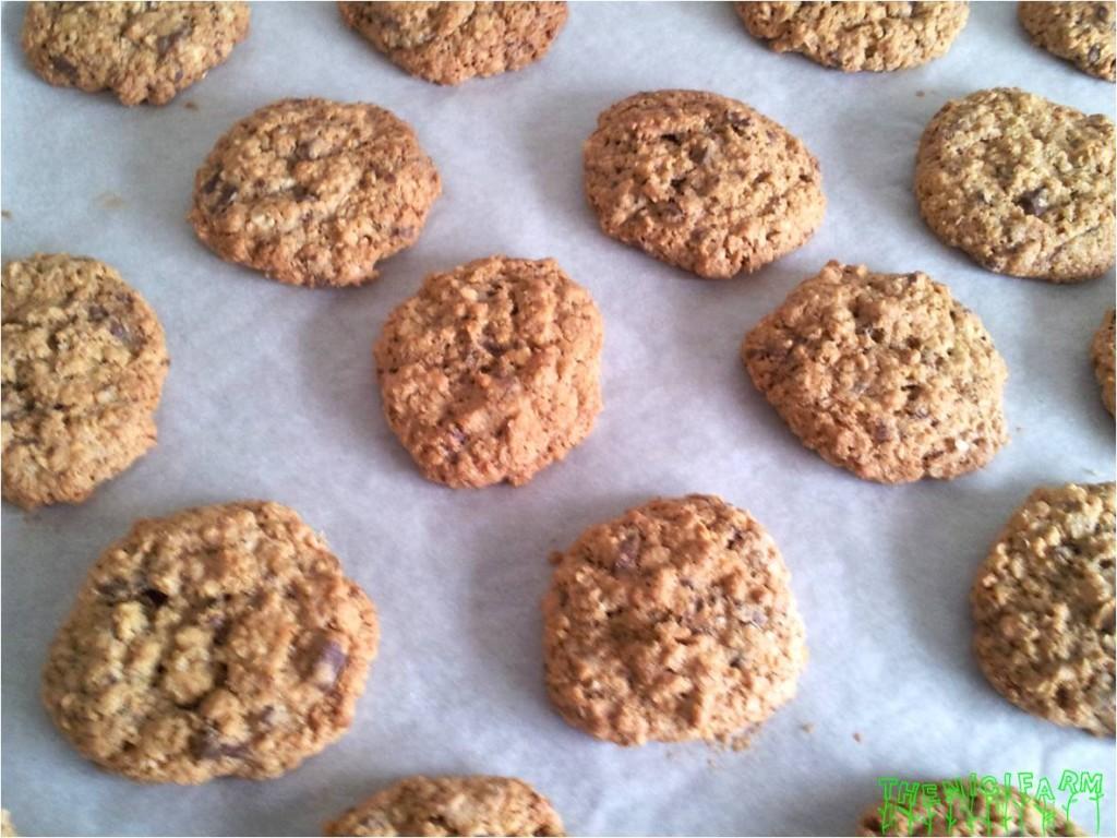 Oatmel cookies